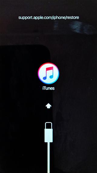 iPhone itunes